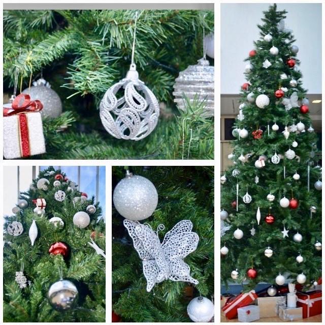 Christmas Tree Uk Online: Christmas Tree Hire Service Harrow